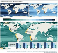 The Manmade Ocean Crisis – Modeling Predictions (boellstiftung) Tags: oceanatlas climatechange pollution sea ocean heinrichboellfoundation maritimeindustry shippingindustry overfishing ecosystem biodiversity