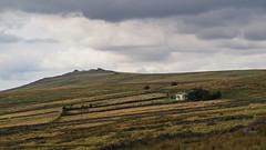 Yellowmeade Farm, Great Mis Tor, Dartmoor (mpb_17) Tags: dartmoor devon england national park tor moorland outdoors