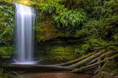 Koropuku Falls (alexislutaud) Tags: air waterfalls water walk walking texture trees tree green paysage paisaje park day magic wood light landscape long world camera nikon nature naturaleza exposure