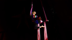 Circus (1) : acrobat in action (Franck Zumella) Tags: aerialist trapeze cirque spectacle vol acrobate acrobat acrobatique artiste grace danse mouvement artistique circus light colors flying europa pink red