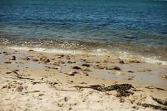 2017-07-30 Martha's Vineyard 010 (Ray Bernoff) Tags: marthasvineyard summer travel massachusetts newengland vacation beach ocean shore