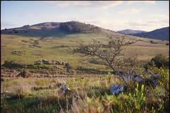 Afueras de Minas (Nando.uy) Tags: nandouy minas lavalleja uruguay fuji gw690ii kodak ektar 100 gw 690 ii rangefinder landscape paisaje formato medio medium format rollo analog film 6x9 120 fujica ishootfilm filmisnotdead