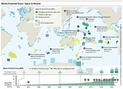 Marine Protected Areas – Space to Recover (boellstiftung) Tags: oceanatlas climatechange pollution sea ocean heinrichboellfoundation maritimeindustry shippingindustry overfishing ecosystem biodiversity