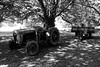 left (pamelaadam) Tags: 2010 digital scotland summer bw august ellon aberdeenshire tractor elloncastle fotolog thebiggestgroup