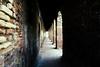 arches & columns (Michael Moeller) Tags: venedig summer travel italiy venezia veneto italien it