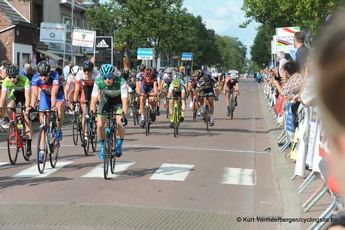 Omloop Vlaamse gewesten (484)