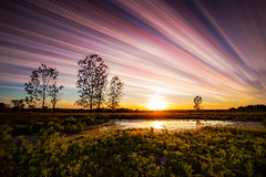 A Slice of Summer (Matt Molloy) Tags: mattmolloy timelapse photography timestack photostack movement motion summer colourful sky sun sunset clouds trails lines light grass field trees pond water reflection violet ontario canada landscape nature lovelife