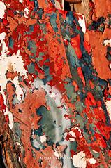 Capas (Alicia Clerencia) Tags: street urbana villages pueblos ayamonte texturas textures red rojo tiempo time barco boat
