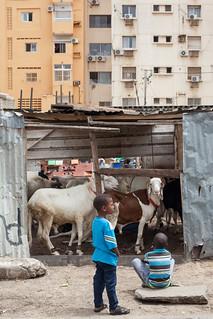 City Living, Dakar