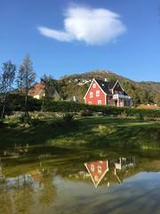 Høst - - Autumn reflection (erlingsi) Tags: erlingsi iphone erlingsivertsen lappen norge bergen reflection speiling dam pilaren storhaug park haust høst autumn speglun