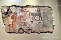 For Nebamun (konde) Tags: nebamun 18thdynasty thebes newkingdom tombrelief tombpainting ancientegypt britishmuseum art horse