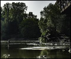 Pêcheur en Loire (touflou) Tags: pont cosnesurloire nievre loire fleuve rivière river railway pecheur peche