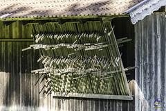 Harvest tools (carolienvanhilten) Tags: garmischpartenkirchen bavaria beieren gorge partnachklamm deutschland duitsland germany waterfall waterval rainbow mountains water