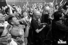 2017 Bosuil-Het publiek bij Back To Back en The Lachy Doley Group 11-ZW
