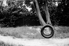 Tire Swing (Von Noorden) Tags: noiretblanc einfarbig wand black white blackandwhite bw sw schwarzweiss topv germany schwarz weiss weis schwarzweis shade monochrome plain tyre tire swing swinger rope playground fun park tree playing toy toys funtime children child kids town grass hoop hoops tyres tires neustadt holstein ostholstein lübeck urban