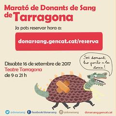 XIII Marató de donants de sang a Tarragona