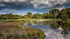 Marais De Bonnance (musette thierry) Tags: landscape marais pévèle mélantois musette thierry d600 paysage vue panorama endroit france nord