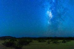 Light in the Desert (Carl Cohen_Pics) Tags: isaiah403 sonorandesertnationalmonument sonorandesert nature scripture scriptureverse arizona milkyway stars