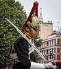 Household Cavalry (bart7jw) Tags: autumn london soldier mounted horse ceremonial uniform sword guard queens life whitehall canon 700d t5i eos sigma 18250