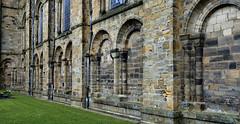 Norman/Romanesque blind arcade, c1120 - Durham Cathedral, Durham, England. (edk7) Tags: nikond300 edk7 2013 uk england durham cathedralchurchofchristblessedmarythevirginandsaintcuthbertofdurham durhamcathedral nave exterior normanromanesquecolumn blindarcade c1120 architecture building oldstructure stonecarving sculpture column medieval unescoworldheritagesite gradeilisted grass lawn window downspout texture crusty arch
