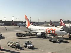 G3 B737 GRU (Luis Fernando Linares) Tags: aéreos transportes brasil winglets gate ramp planespotting cfmi cfm jet sbgr guarulhos gru g3 glo gol b737ng boeing airport airlines aircraft airplane avgeek aviation