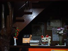 clerk (murozo) Tags: manekineko clerk hot spring front yurihonjo akita japan 招き猫 番頭 番台 温泉 由利本荘 秋田 日本 花 flower step 階段 電話 telephone