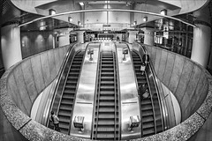 melbourne-9140-bw-ps-w (pw-pix) Tags: escalator escalators people riding standing moving pictures parliamenthousepictures ascending descending lights ceiling shiny reflective metallic stainlesssteel silver polished reflections white grey black circle circular semicircular round rounded signs poles supports stone stonework barrier wall railwaystation trainstation station cityloopstation cityloop underground metro tunnels bw blackandwhite fisheye sigma15mmfisheye distortion parliamentstationescalators lonsdalestreet parliament cbd melbourne victoria australia