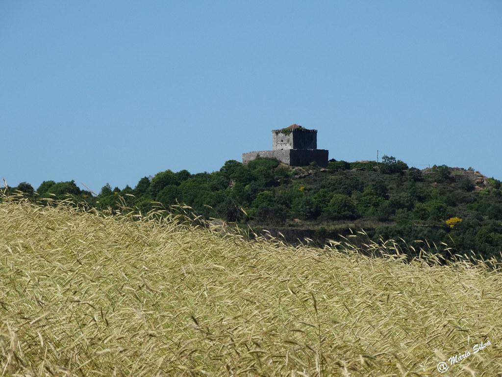 Águas Frias (Chaves) - ... a seara de centeio e o castelo de Monforte de Rio Livre ...