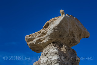 Wolf Hoodoo in the Bisti Badlands