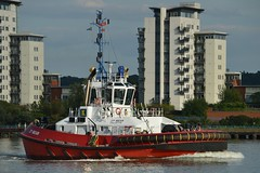 ZP Bear (9) @ Gallions Reach 13-08-17 (AJBC_1) Tags: riverthames london ship boat vessel dlrblog england unitedkingdom uk ©ajc northwoolwich eastlondon newham londonboroughofnewham tug tugboat zpbear nikond3200 shipsinpictures kotugsmittowage gallionsreach ajbc1