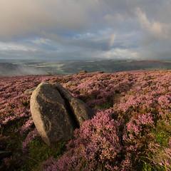 Over Owler Tor (Paul Newcombe) Tags: overowlertor peakdistrict morning sunrise heatehr derbyshire peaks england landscape gb colour nationalpark rain shower storm canom5dsr canon1635f4l august 2017 rainbow