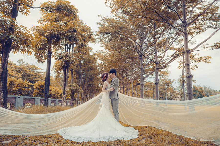 35957067170 9a6945d115 o [台南自助婚紗] K&N /崇尚森林草原系風格