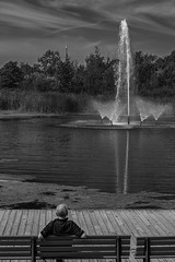 Woodbine Park, a Man, and the CN Tower (Royal Canadian) Tags: woodbine toronto cntower park man fountain bw ontario canada bench pond