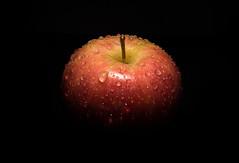 An apple a day... (g3az66) Tags: anappleaday apple gala water waterdroplet yn560iv rogue griddedsnoot strobist strobism vellum