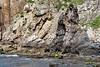 Playa del Silencio (Yuri Rapoport) Tags: 2015 playadelsilencio asturias spain