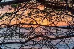 The Last Bastion (bffpicturesworld) Tags: sunset sea ocean peace bestplace wild reunionisland iledelareunion