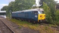 50008 Thunderer on the Bishop line (Uktransportvideos82) Tags: class50 50008 thunderer
