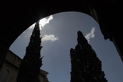 (marcog91) Tags: city beautiful florence firenze italy italia discover duomo outdoor outside out oasi toscana touscany architecture around ancient amatorial adventure explore europe edificio exploration world tower travel story top building piazza place
