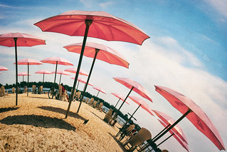 Growing Pink Umbrellas on Sugar Beach Planet