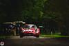 Ferrari 250 GTO 63 (GPE-AUTO) Tags: chantilly artsetelegance art elégance castle nature france autoshow motorshow classic concours contest tree friends ferrari 250 gto 1963 ferrari250 ferrari250gto 250gto gto63 wild trees naturallight legend ferrariclassic