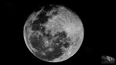 MOON_BLACK_&_WHITE_MOZAMBIQUE (paulomarquesfotografia) Tags: sony hx400v paulo marques mozambique moon lua bw preto branco astral ceu sky
