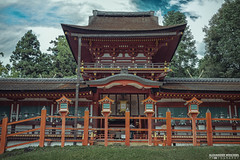 Kasuga Taisha Shrine, Nara, Japan (ONLY-JAPAN-PHOTOGRAPHY) Tags: 2014 2015 2016 ancient buddhism best culture d610 green honshu japan japón japani japon japanese nature nihon nikon nippon red shintoism shinto summer tradition travel travelling view world 日本 本州 일본