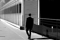 In front of lines (pascalcolin1) Tags: paris homme man lined lignes lines soleil sun mur wall lumière light photoderue streetview urbanarte noiretblanc blackandwhite photopascalcolin