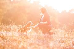 Grandma Roxy (Maria Zielonka) Tags: hund hunde hundefotografie outdoor heide heather dog dogs dogphotography tierfotografie haustier petphotography animalphotography pet hamburg maria zielonka fotografie photography shooting mensch sonnenuntergang gegenlicht sunset seniordog alter omihund