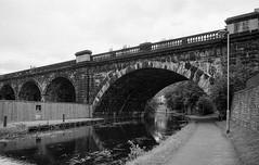 Holbeck Viaduct across Leeds Liverpool Canal. (Tony Joness) Tags: bw canals film leeds pentaxmesuper rolleirpx100 analogue analog bnw blackandwhite blackwhite canal develop developer epson epsonscanner 35mm england fomafix lightroom6 leedsliverpoolcanal monochrome mono rodinal slr scanner scan uk v550 viaduct