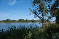 Terrapin Nature Area, Stevensville MD 25 (Larry Miller) Tags: naturepark conservation chesapeakebay maryland 2017