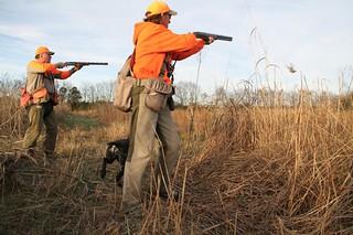 Alabama Luxury Quail Hunt - Guntersville 28