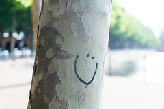 Happy tree (Mister Rad) Tags: nikond600 nikon50mmf14g london surreyquays greenlandquay tree face happy streetart