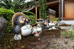 Ceramic tanuki figures (Greg Peterson in Japan) Tags: 甲賀市 koka 滋賀県 shiga temples japan shigaprefecture