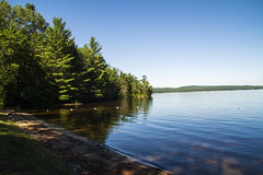 (Pandella Burns) Tags: amanda panda burns july 2016 canada ontario stonecliff driftwood campground camping camp nature outdoor landscape beach brown sand sandy green plant plants tree trees branch branches leaf leavs lake water blue sky
